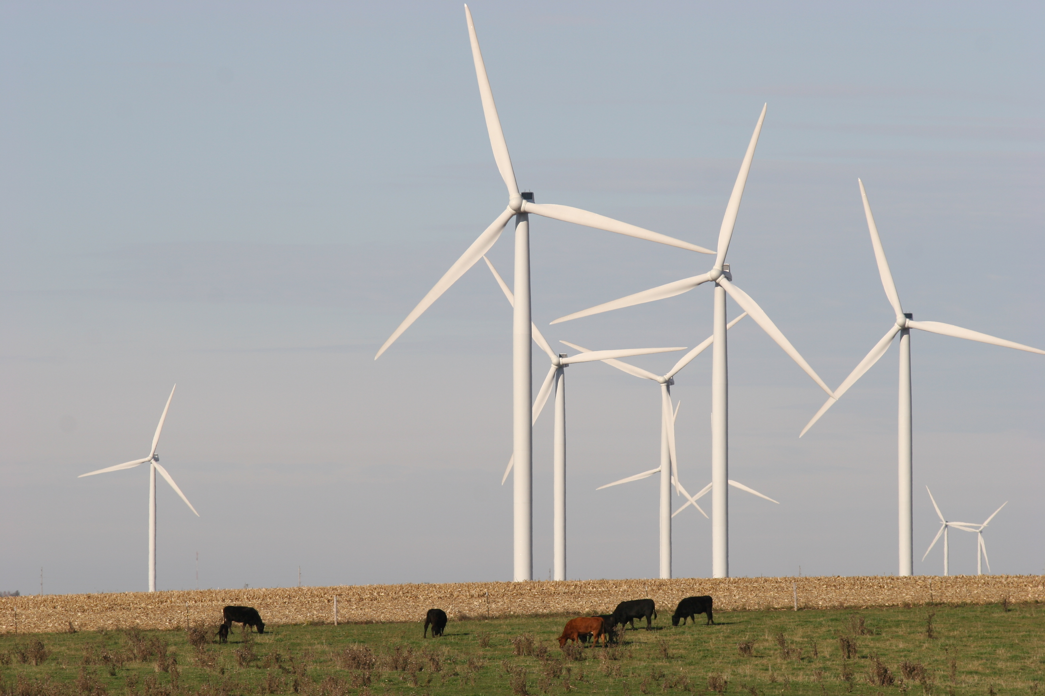 collection of wind turbines near farm fields. Click to enlarge .